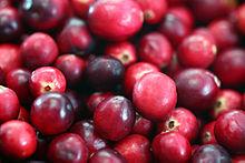 220px-Cranberries20101210